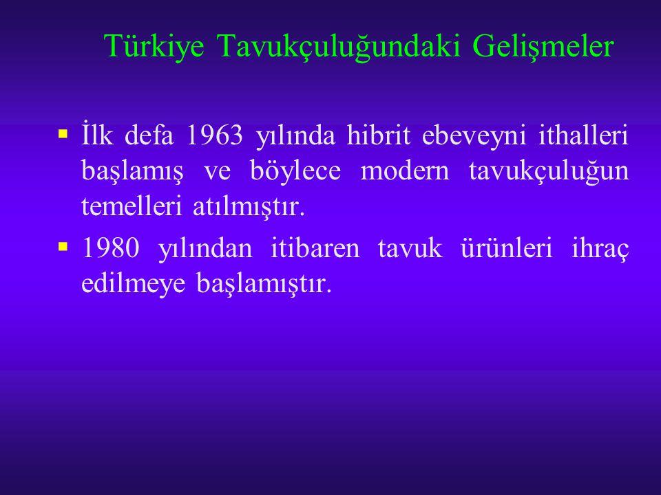 Türkiye Tavukçuluğundaki Gelişmeler  İlk defa 1963 yılında hibrit ebeveyni ithalleri başlamış ve böylece modern tavukçuluğun temelleri atılmıştır. 