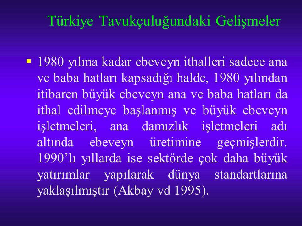 Türkiye Tavukçuluğundaki Gelişmeler  1980 yılına kadar ebeveyn ithalleri sadece ana ve baba hatları kapsadığı halde, 1980 yılından itibaren büyük ebe
