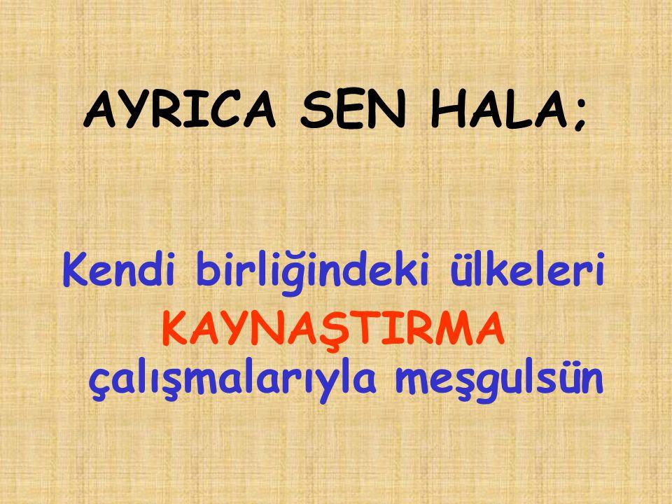 AYRICA SEN HALA; Kendi birliğindeki ülkeleri KAYNAŞTIRMA çalışmalarıyla meşgulsün