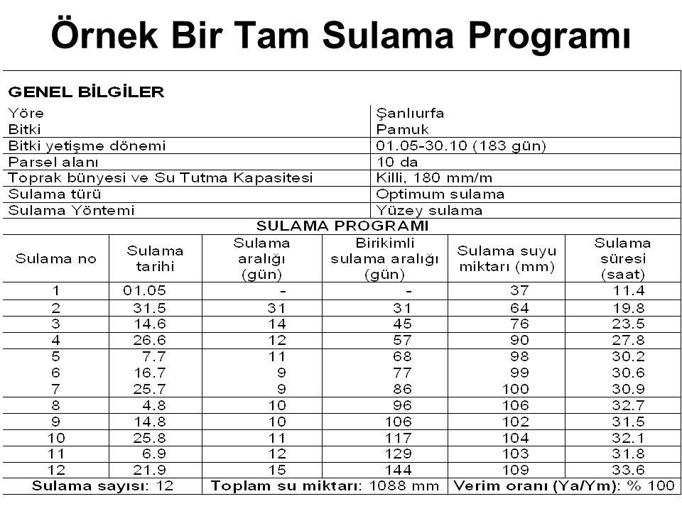 Örnek Bir Tam Sulama Programı