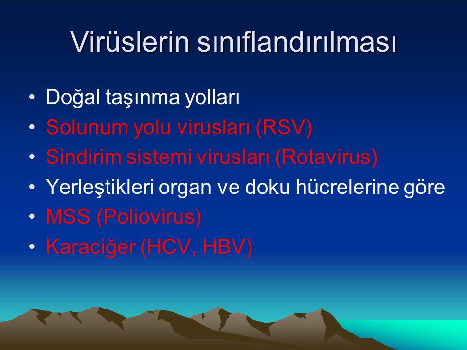 Virüslerin sınıflandırılması Doğal taşınma yolları Solunum yolu virusları (RSV) Sindirim sistemi virusları (Rotavirus) Yerleştikleri organ ve doku hücrelerine göre MSS (Poliovirus) Karaciğer (HCV, HBV)
