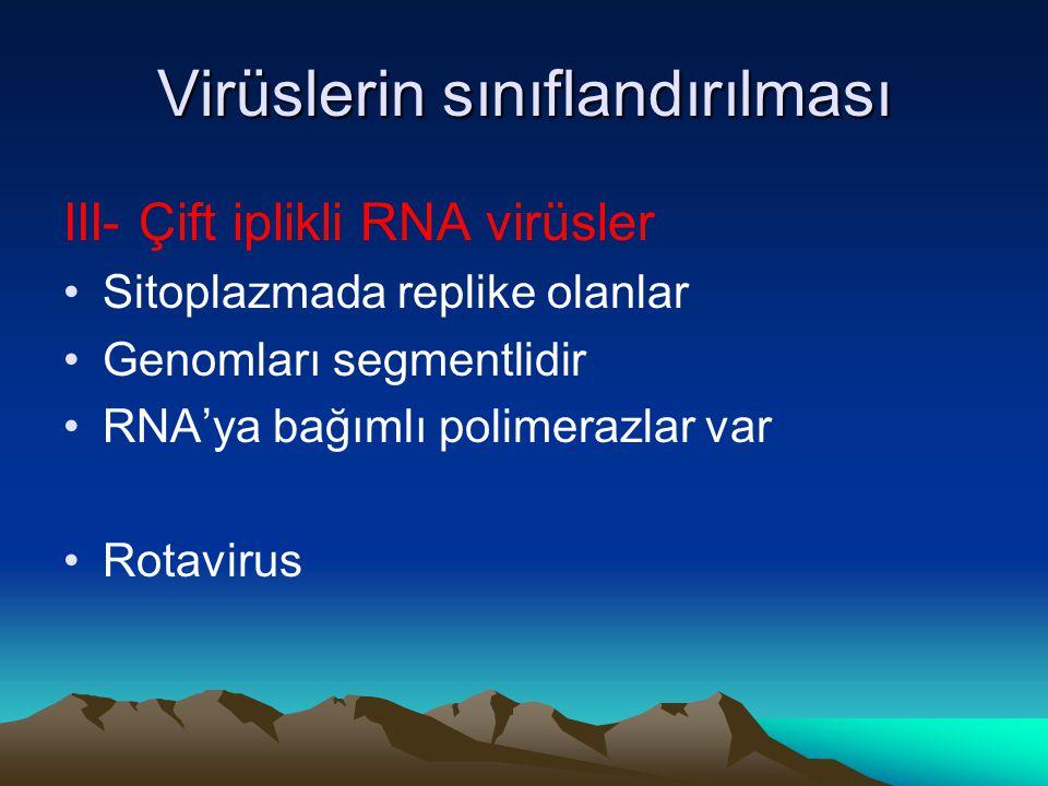 Virüslerin sınıflandırılması III- Çift iplikli RNA virüsler Sitoplazmada replike olanlar Genomları segmentlidir RNA'ya bağımlı polimerazlar var Rotavirus