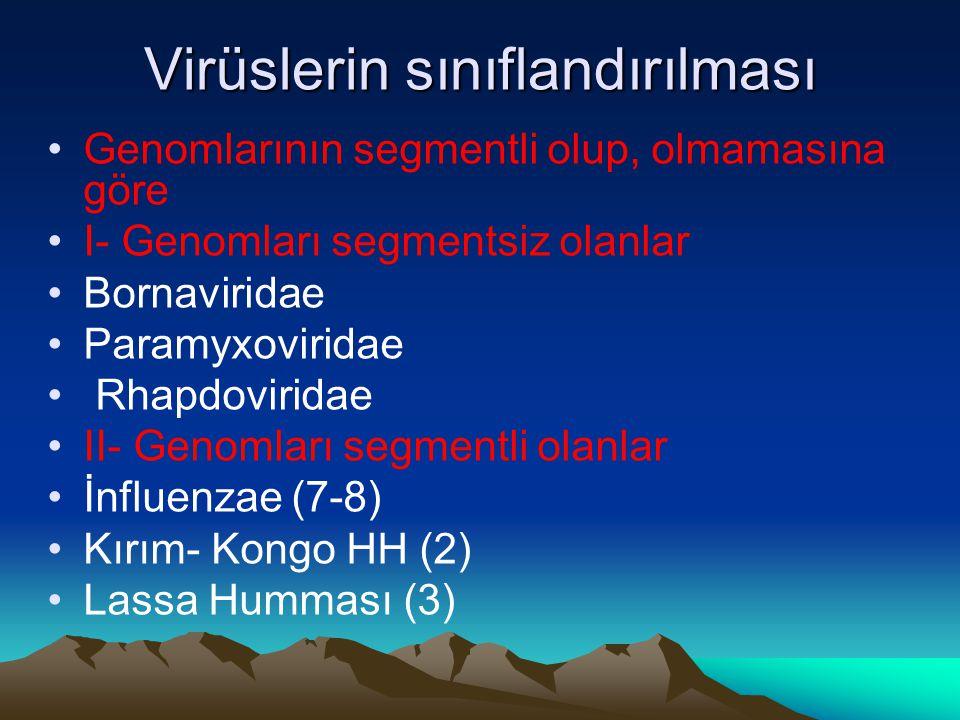 Virüslerin sınıflandırılması Genomlarının segmentli olup, olmamasına göre I- Genomları segmentsiz olanlar Bornaviridae Paramyxoviridae Rhapdoviridae II- Genomları segmentli olanlar İnfluenzae (7-8) Kırım- Kongo HH (2) Lassa Humması (3)