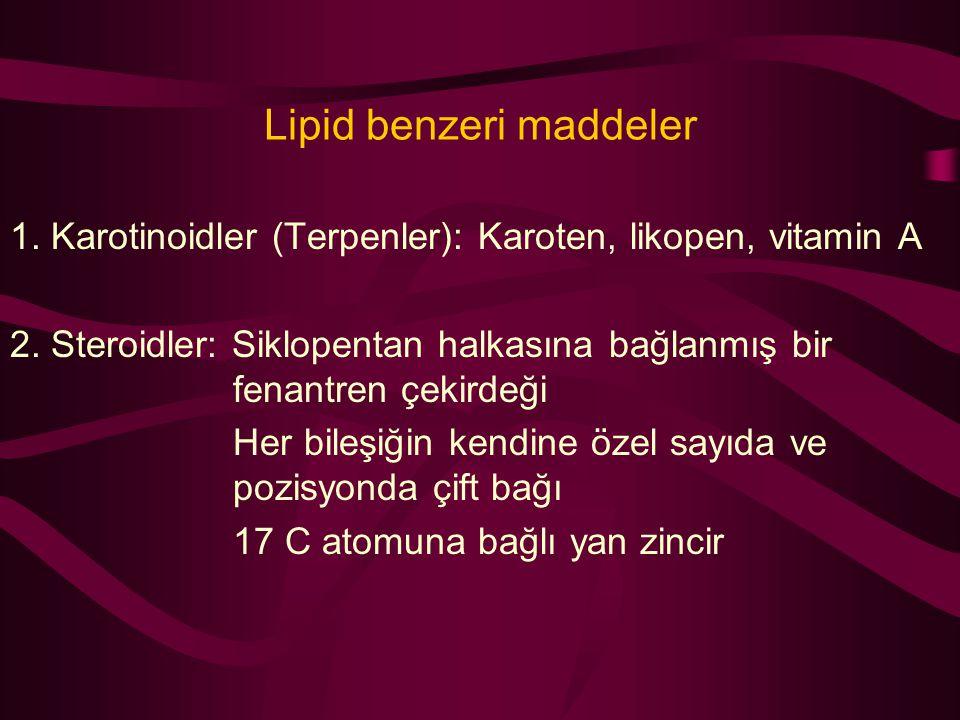 Lipid benzeri maddeler 1. Karotinoidler (Terpenler): Karoten, likopen, vitamin A 2. Steroidler: Siklopentan halkasına bağlanmış bir fenantren çekirdeğ
