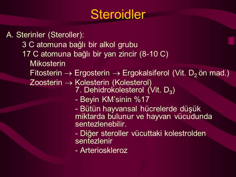 Steroidler A. Sterinler (Steroller): 3 C atomuna bağlı bir alkol grubu 17 C atomuna bağlı bir yan zincir (8-10 C) Mikosterin Fitosterin  Ergosterin 