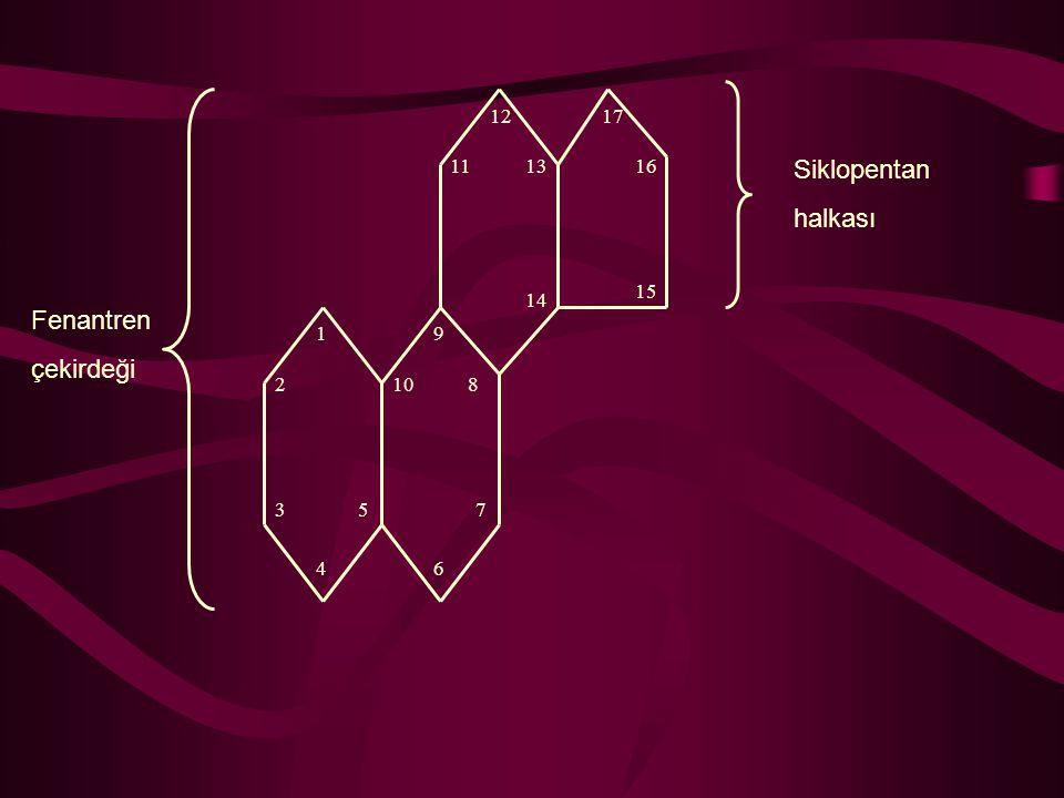 1 2 3 4 5 6 7 8 9 10 11 12 13 14 15 16 17 Fenantren çekirdeği Siklopentan halkası