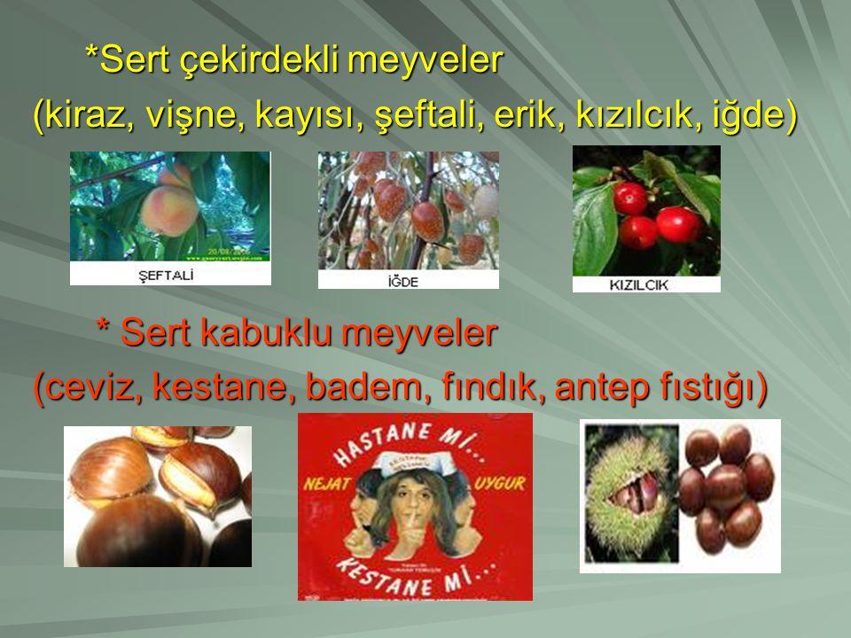 *Sert çekirdekli meyveler (kiraz, vişne, kayısı, şeftali, erik, kızılcık, iğde) * Sert kabuklu meyveler (ceviz, kestane, badem, fındık, antep fıstığı)