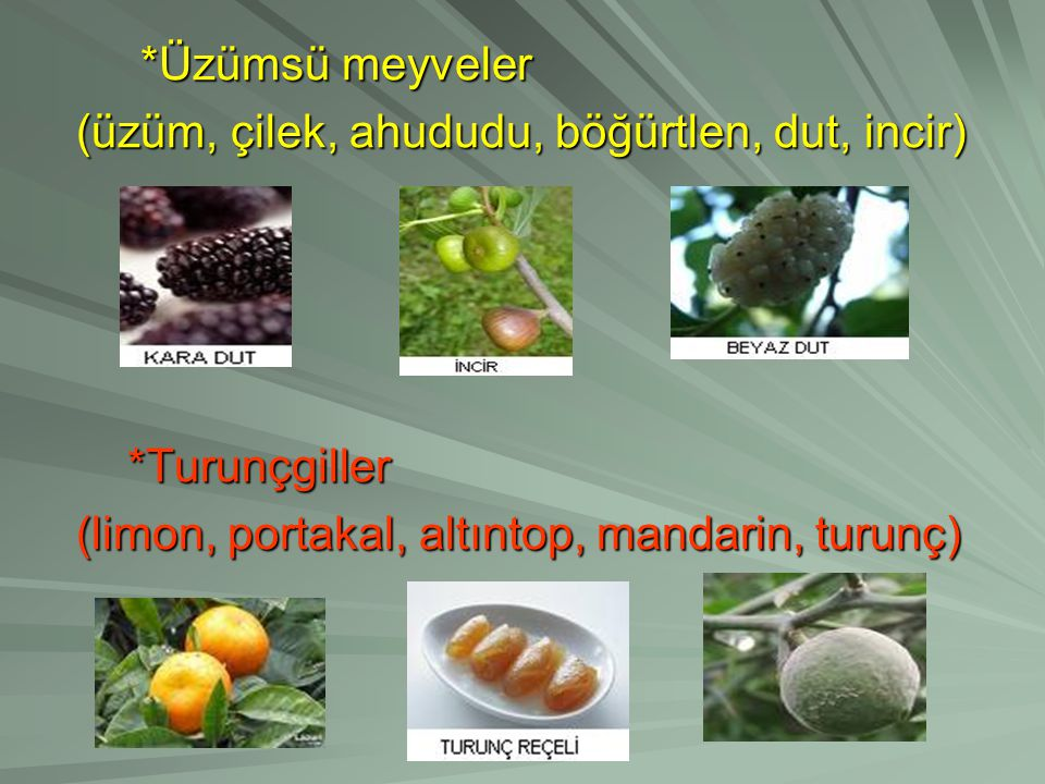 *Üzümsü meyveler *Üzümsü meyveler (üzüm, çilek, ahududu, böğürtlen, dut, incir) (üzüm, çilek, ahududu, böğürtlen, dut, incir) *Turunçgiller *Turunçgiller (limon, portakal, altıntop, mandarin, turunç) (limon, portakal, altıntop, mandarin, turunç)