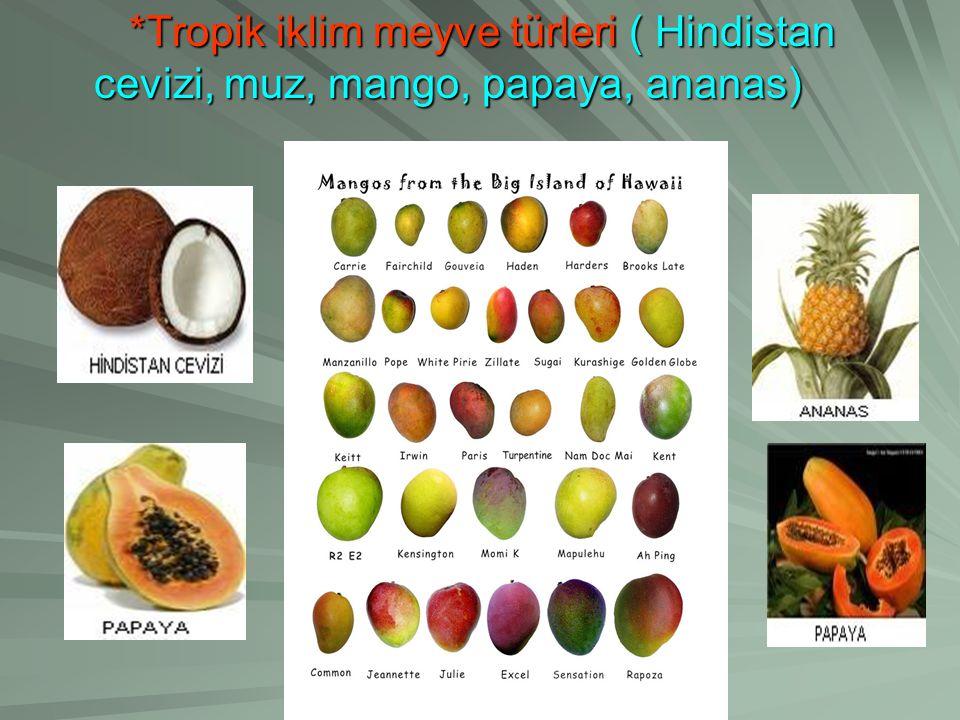 *Tropik iklim meyve türleri ( Hindistan cevizi, muz, mango, papaya, ananas) *Tropik iklim meyve türleri ( Hindistan cevizi, muz, mango, papaya, ananas)