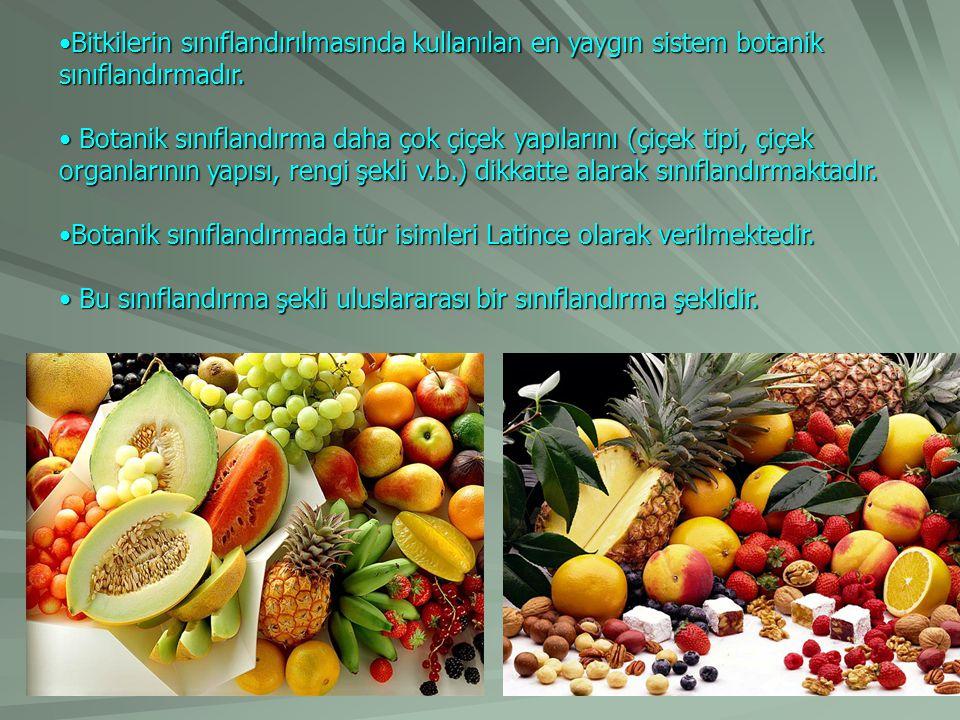 Bitkilerin sınıflandırılmasında kullanılan en yaygın sistem botanik sınıflandırmadır.Bitkilerin sınıflandırılmasında kullanılan en yaygın sistem botan
