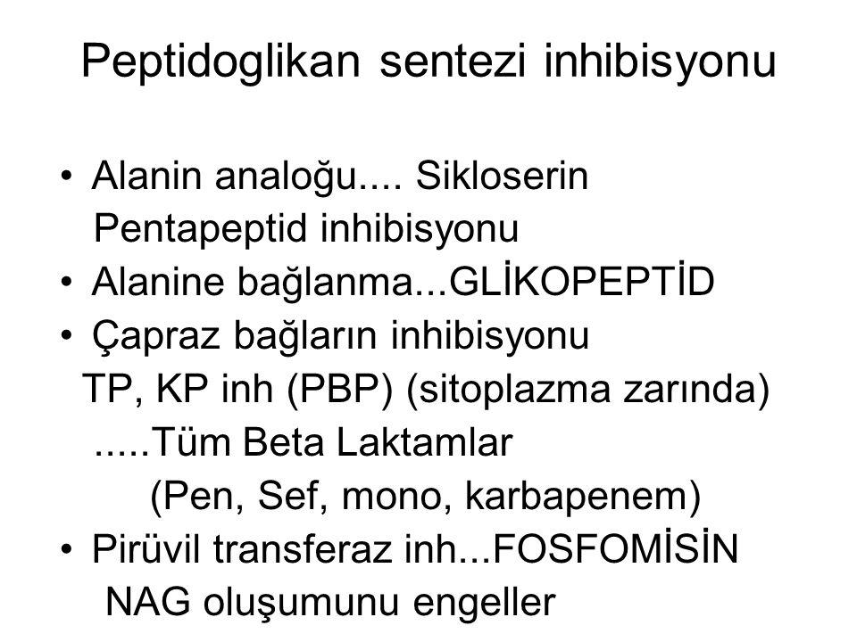 Peptidoglikan sentezi inhibisyonu Alanin analoğu.... Sikloserin Pentapeptid inhibisyonu Alanine bağlanma...GLİKOPEPTİD Çapraz bağların inhibisyonu TP,