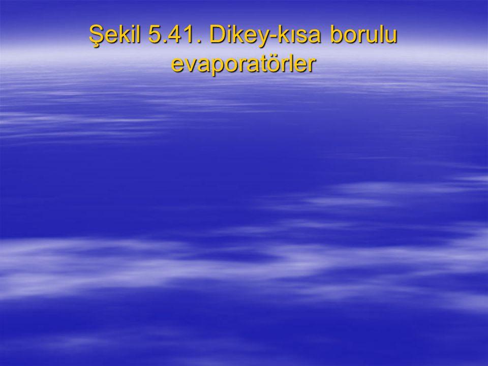 Şekil 5.41. Dikey-kısa borulu evaporatörler