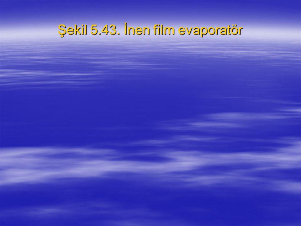 Şekil 5.43. İnen film evaporatör