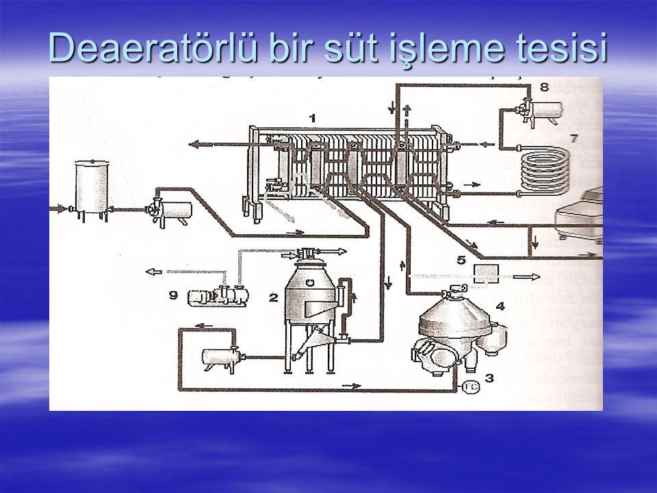 Deaeratörlü bir süt işleme tesisi