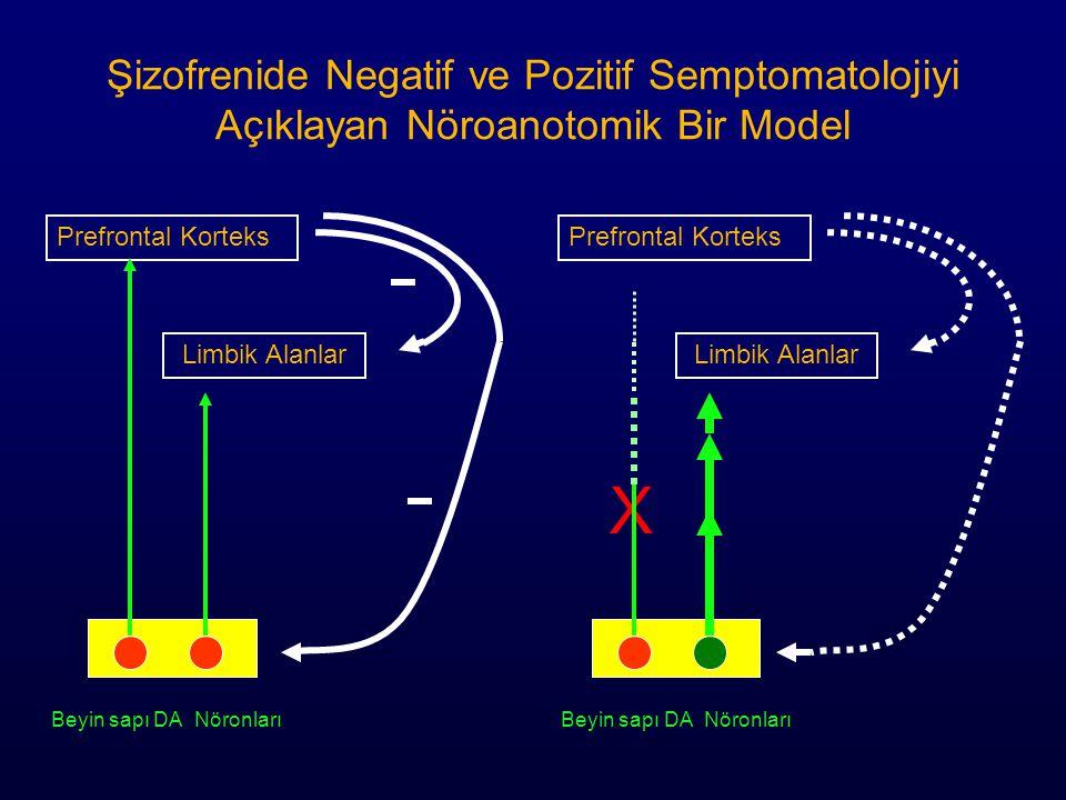 Şizofrenide Negatif ve Pozitif Semptomatolojiyi Açıklayan Nöroanotomik Bir Model X Beyin sapı DA Nöronları Beyin sapı DA Nöronları Prefrontal Korteks Limbik Alanlar