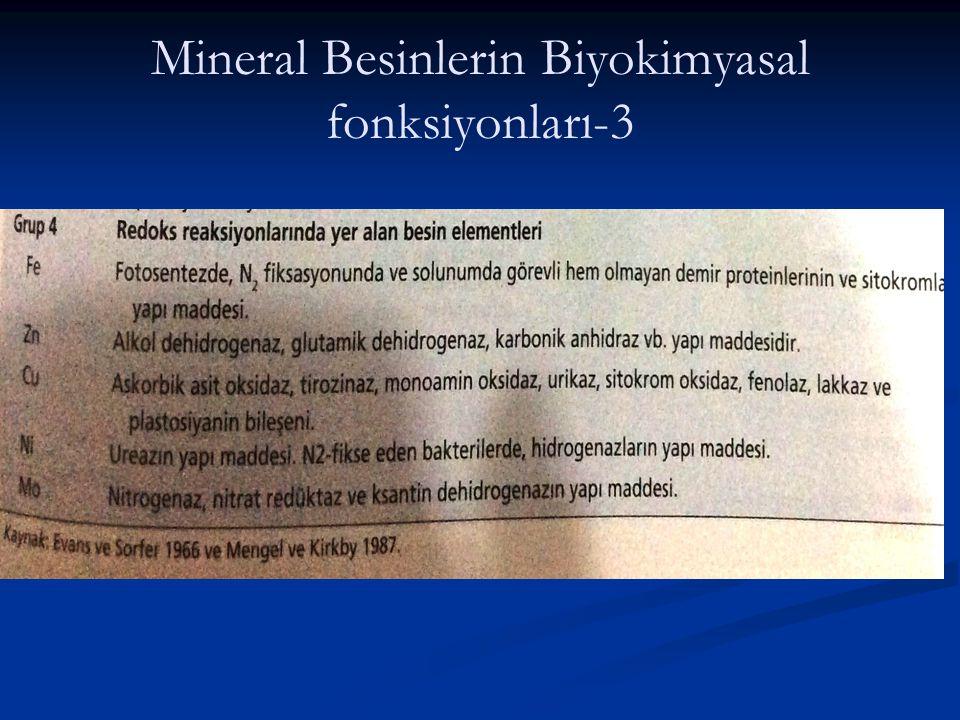 Mineral Besinlerin Biyokimyasal fonksiyonları-3