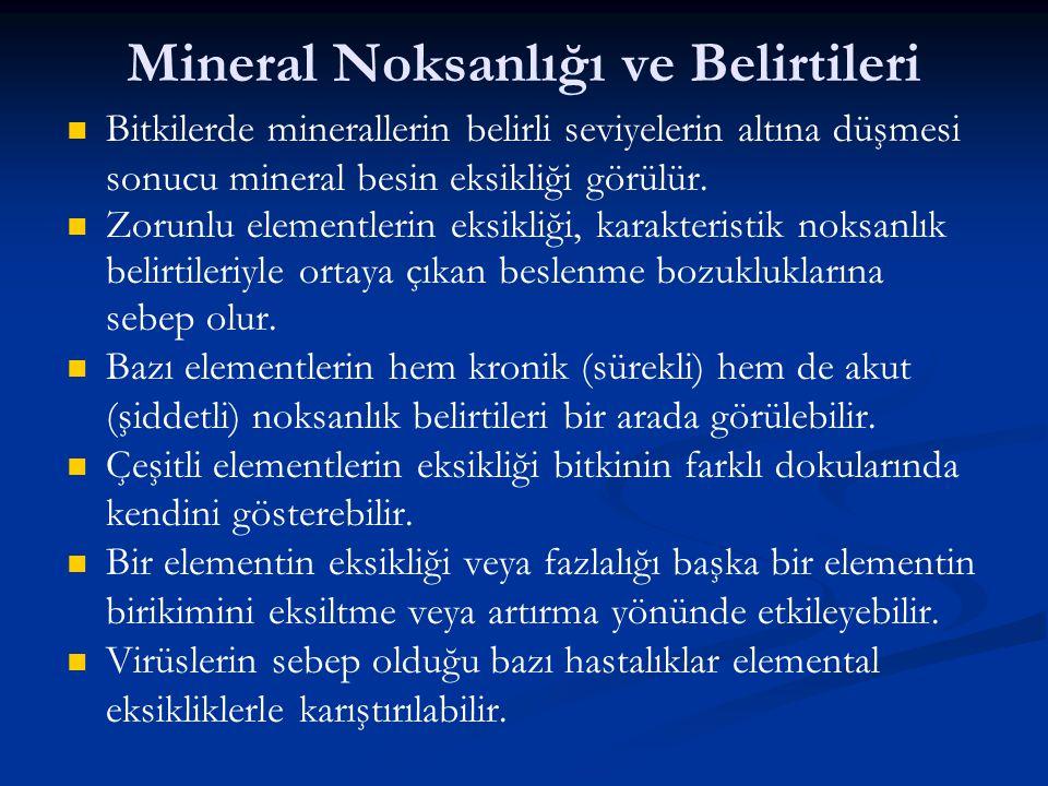 Mineral Noksanlığı ve Belirtileri Bitkilerde minerallerin belirli seviyelerin altına düşmesi sonucu mineral besin eksikliği görülür. Zorunlu elementle