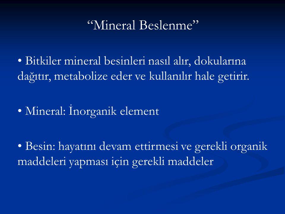 Bitkiler mineral besinleri nasıl alır, dokularına dağıtır, metabolize eder ve kullanılır hale getirir. Mineral: İnorganik element Besin: hayatını deva