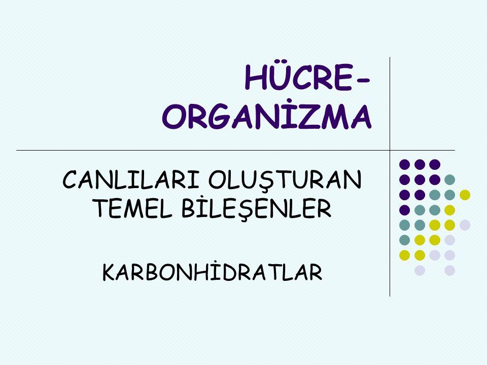 21.YÜZYIL KAZANIMLARI Liderlik ve Sorumluluk Diğerlerini belirli bir hedefe yönelik etkilemek ve yönlendirmek üzere bireylerarası ve problem çözme becerileri kullanmak