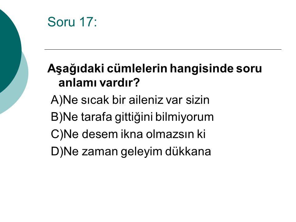 Soru 17: Aşağıdaki cümlelerin hangisinde soru anlamı vardır.