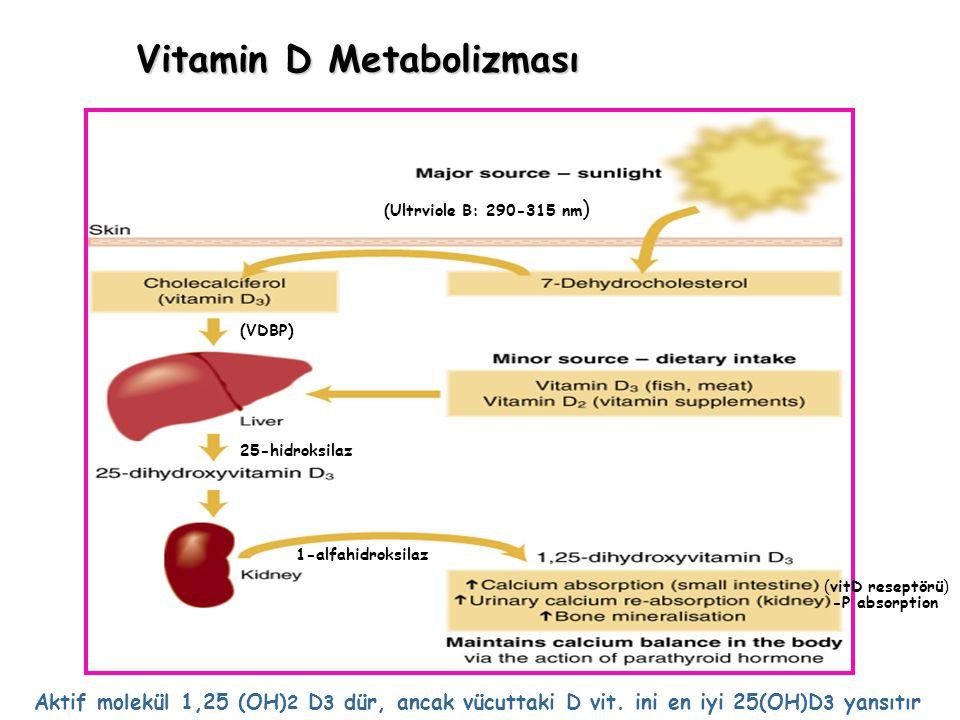 Vitamin D Metabolizması Aktif molekül 1,25 (OH) 2 D 3 dür, ancak vücuttaki D vit. ini en iyi 25(OH)D 3 yansıtır (Ultrviole B: 290-315 nm ) (VDBP) 25-h
