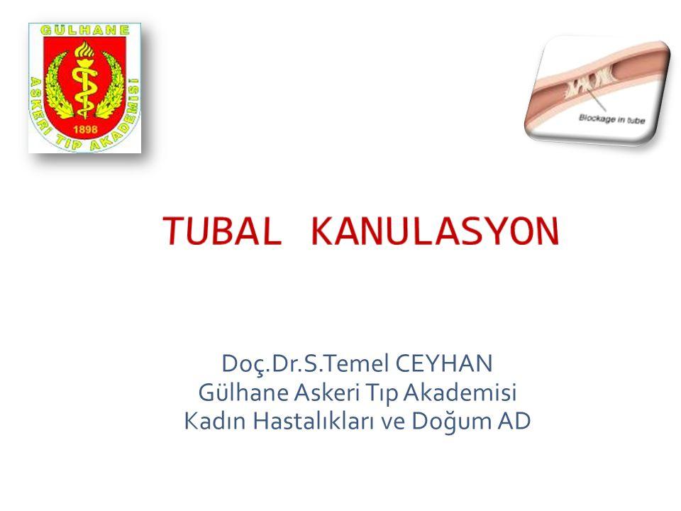 Doç.Dr.S.Temel CEYHAN Gülhane Askeri Tıp Akademisi Kadın Hastalıkları ve Doğum AD