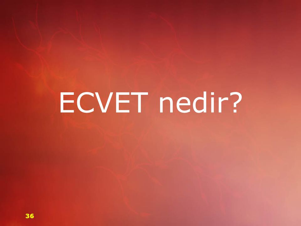 ECVET nedir? 36