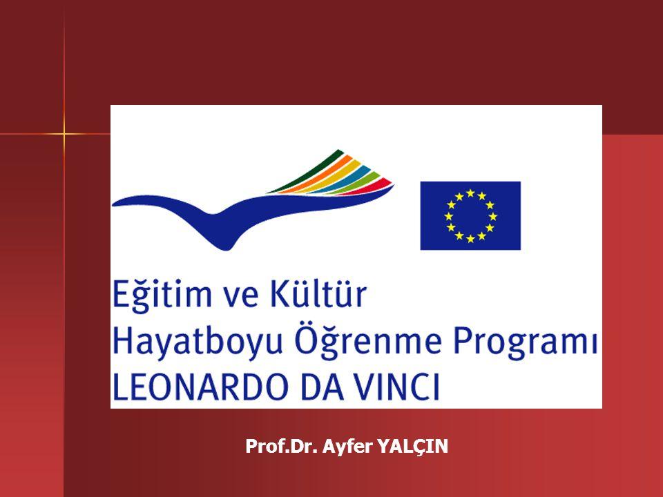 HAYATBOYU ÖĞRENME PROGRAMI Sektörel Programlar COMENIUS (Okul Eğitimi) ERASMUS (Yüksek Öğretim) LEONARDO DA VINCI (Mesleki Eğitim) GRUNDTVIG (Yetişkin Eğitimi) Ortak Konulu Programlar 4 Temel Faaliyet: Politika Geliştirme Diller Bilgi İletişim Teknolojileri Sonuçların Yaygınlaştırılması ve Kullanımı Jean Monnet Programı 3 Temel Faaliyet: Jean Monnet Eylemi Avrupa Kurumları Avrupa Kuruluşları