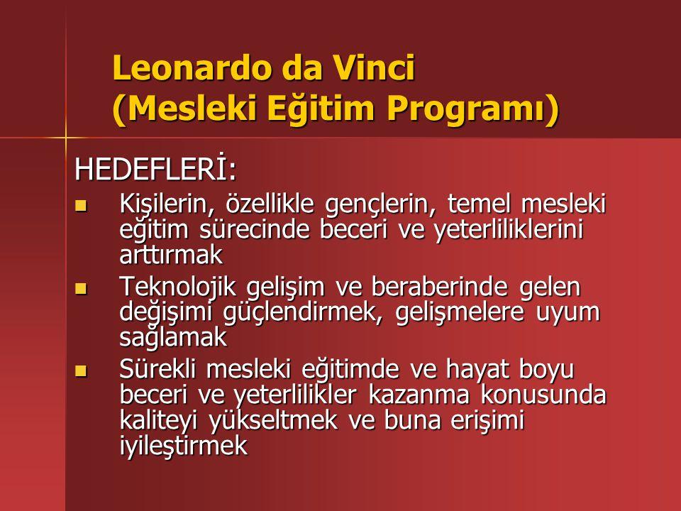 Leonardo da Vinci (Mesleki Eğitim Programı) HEDEFLERİ: Mesleki eğitimin yenileşme sürecini özendirmek Mesleki eğitimin yenileşme sürecini özendirmek Üniversiteler dahil mesleki eğitim kurumları ile işletmeler (özellikle KOBİ ler) arasındaki işbirliğini arttırmak Üniversiteler dahil mesleki eğitim kurumları ile işletmeler (özellikle KOBİ ler) arasındaki işbirliğini arttırmak