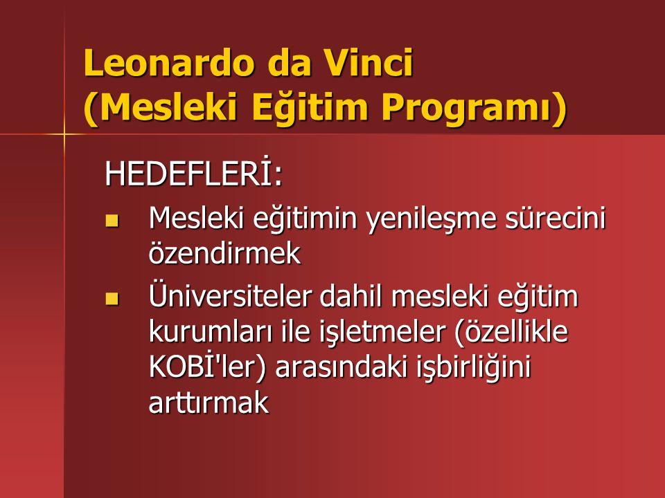Leonardo da Vinci (Mesleki Eğitim Programı) HEDEF KİTLE: Her düzeydeki (üniversiteler dahil) mesleki eğitim kuruluşları ve eğitim merkezleri Her düzeydeki (üniversiteler dahil) mesleki eğitim kuruluşları ve eğitim merkezleri Araştırma merkezleri ve enstitüler Araştırma merkezleri ve enstitüler Yerel yönetimler Yerel yönetimler İşletmeler ve KOBİ'ler İşletmeler ve KOBİ'ler