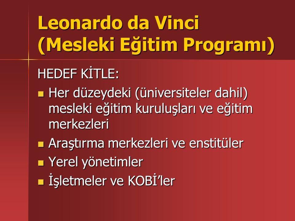 Leonardo da Vinci (Mesleki Eğitim Programı) YARARLANICILAR: Temel mesleki eğitim almakta olan kişiler Temel mesleki eğitim almakta olan kişiler Yüksek Öğrenim Görenler Yüksek Öğrenim Görenler Yeni mezunlar, işe yeni başlayanlar, Yeni mezunlar, işe yeni başlayanlar, iş arayanlar iş arayanlar