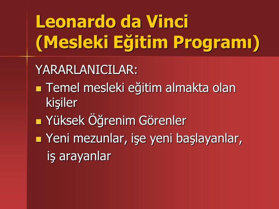 Leonardo da Vinci (Mesleki Eğitim Programı) YARARLANICILAR: İş dünyasındaki insan kaynakları yöneticileri İş dünyasındaki insan kaynakları yöneticileri Eğitimciler ve mesleki rehberlik uzmanları Eğitimciler ve mesleki rehberlik uzmanları Mesleki eğitim programı planlayıcıları ve yöneticileri Mesleki eğitim programı planlayıcıları ve yöneticileri