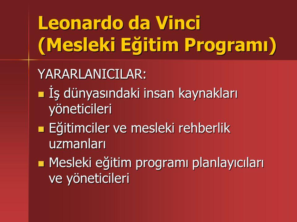 Leonardo da Vinci (Mesleki Eğitim Programı) YARARLANICILAR: İş dünyasındaki insan kaynakları yöneticileri İş dünyasındaki insan kaynakları yöneticiler