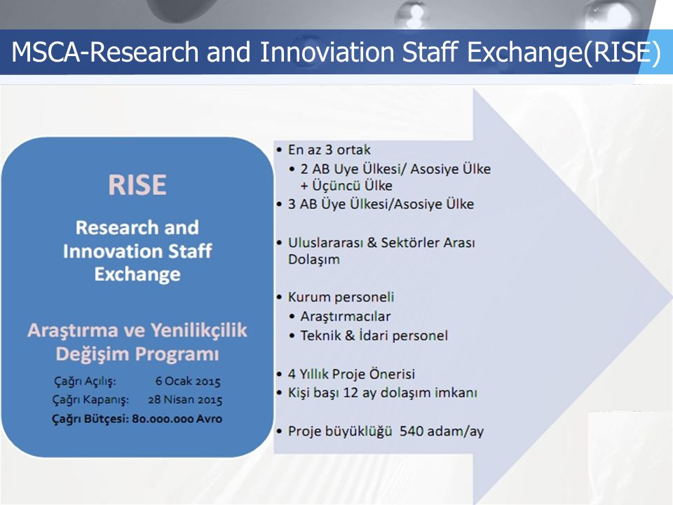 LOGO MSCA-Research and Innoviation Staff Exchange(RISE)