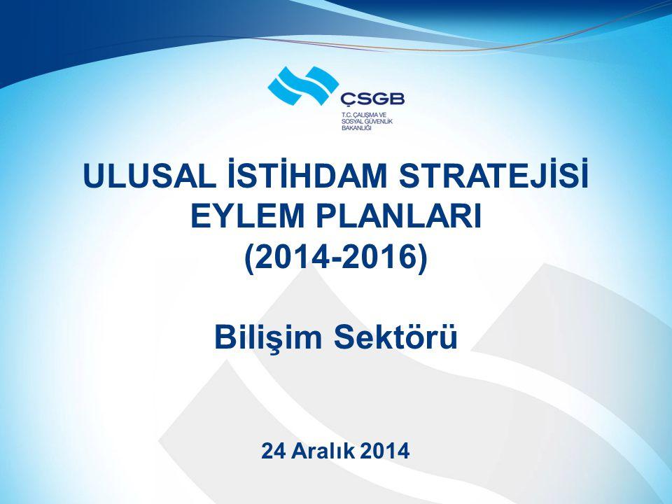 ULUSAL İSTİHDAM STRATEJİSİ EYLEM PLANLARI (2014-2016) Bilişim Sektörü 24 Aralık 2014