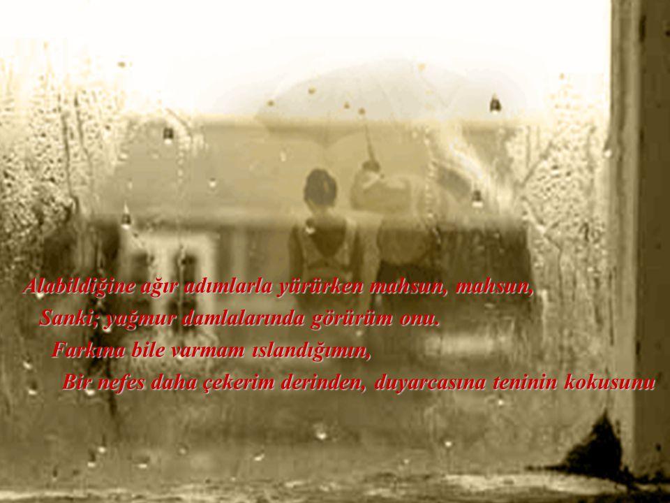 Alabildiğine ağır adımlarla yürürken mahsun, mahsun, Sanki; yağmur damlalarında görürüm onu.