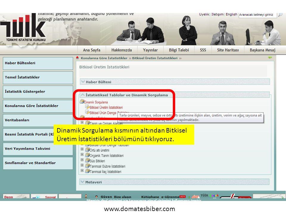 www.domatesbiber.com Dinamik Sorgulama kısmının altından Bitkisel Üretim İstatistikleri bölümünü tıklıyoruz.