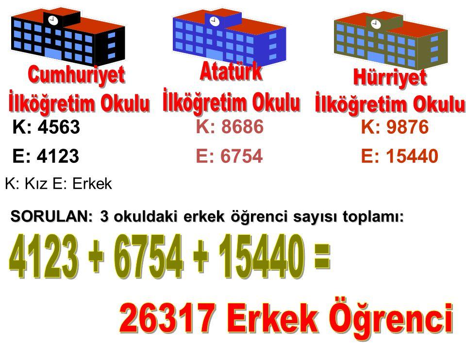 K: 4563 E: 4123E: 6754 K: 9876 E: 15440 K: Kız E: Erkek K: 8686 SORULAN: 3 okuldaki erkek öğrenci sayısı toplamı: