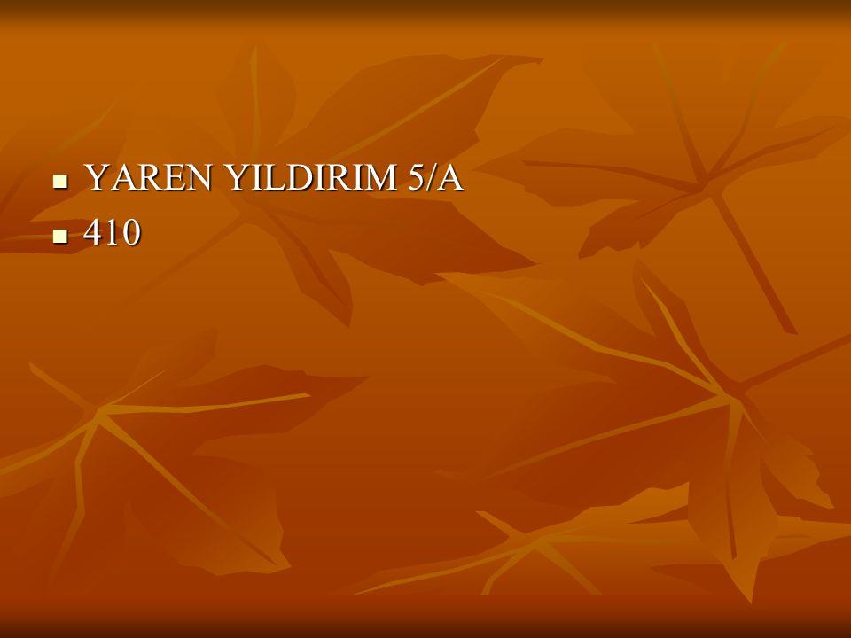 YAREN YILDIRIM 5/A YAREN YILDIRIM 5/A 410 410
