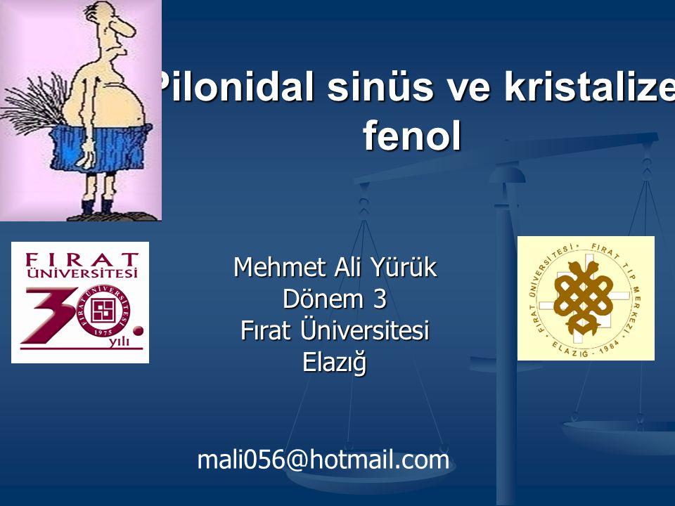 Pilonidal sinüs ve kristalize fenol Mehmet Ali Yürük Dönem 3 Fırat Üniversitesi Elazığ mali056@hotmail.com