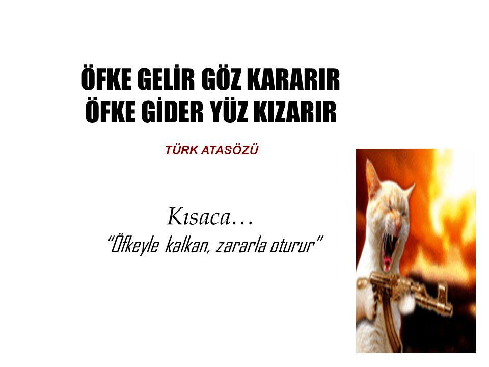 ÖFKE YÖNETİMİ 1.