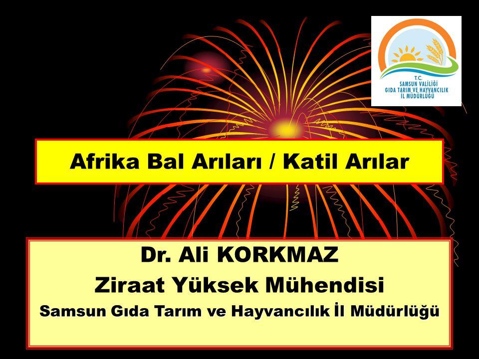 Afrika Bal Arıları / Katil Arılar Dr. Ali KORKMAZ Ziraat Yüksek Mühendisi Samsun Gıda Tarım ve Hayvancılık İl Müdürlüğü
