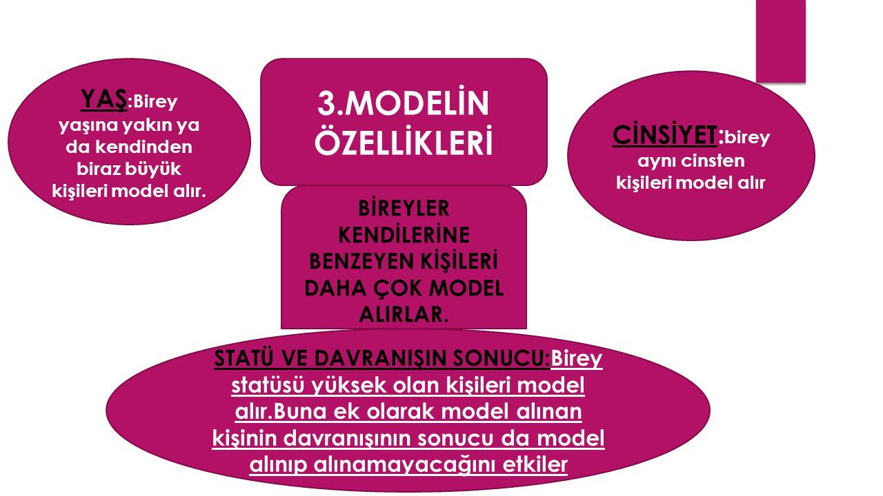 3.MODELİN ÖZELLİKLERİ YAŞ :Birey yaşına yakın ya da kendinden biraz büyük kişileri model alır.