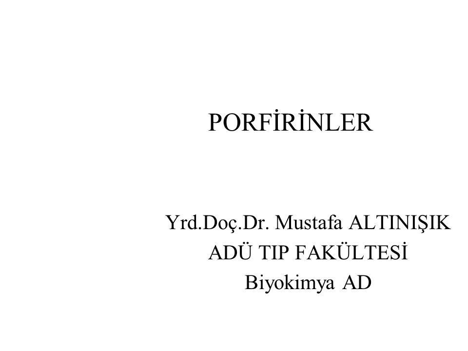 PORFİRİNLER Yrd.Doç.Dr. Mustafa ALTINIŞIK ADÜ TIP FAKÜLTESİ Biyokimya AD
