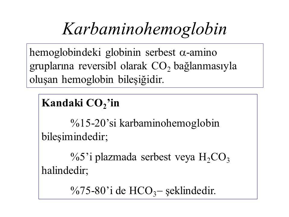 Karbaminohemoglobin hemoglobindeki globinin serbest  -amino gruplarına reversibl olarak CO 2 bağlanmasıyla oluşan hemoglobin bileşiğidir. Kandaki CO