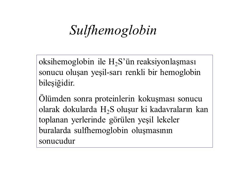 Sulfhemoglobin oksihemoglobin ile H 2 S'ün reaksiyonlaşması sonucu oluşan yeşil-sarı renkli bir hemoglobin bileşiğidir. Ölümden sonra proteinlerin kok
