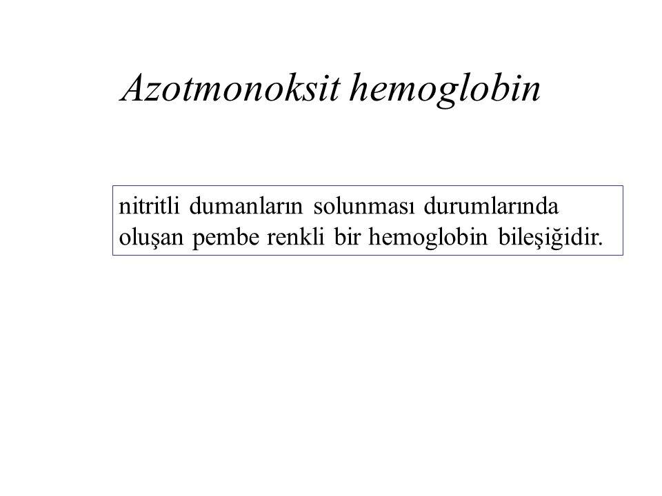 Azotmonoksit hemoglobin nitritli dumanların solunması durumlarında oluşan pembe renkli bir hemoglobin bileşiğidir.
