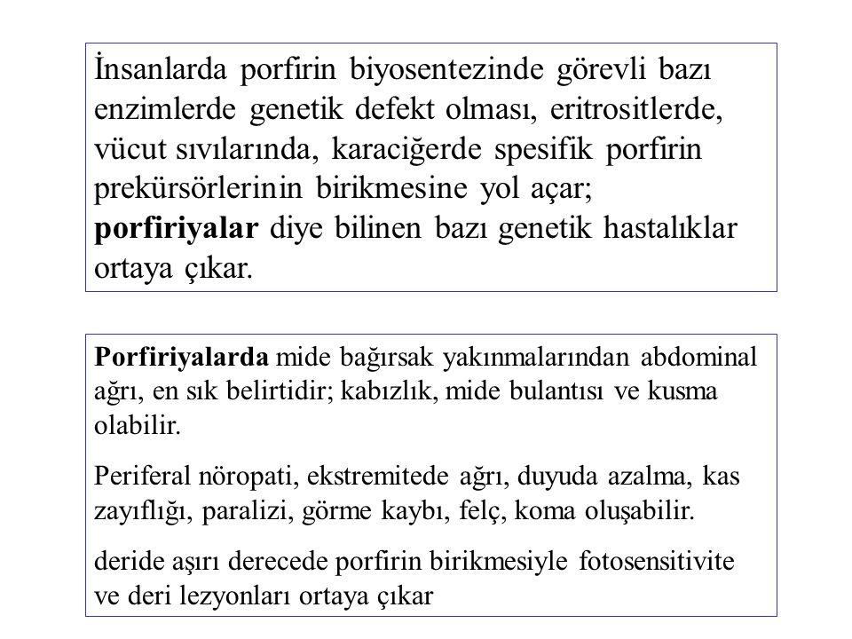 İnsanlarda porfirin biyosentezinde görevli bazı enzimlerde genetik defekt olması, eritrositlerde, vücut sıvılarında, karaciğerde spesifik porfirin pre