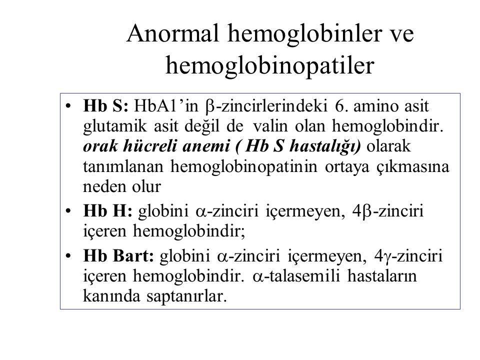 Anormal hemoglobinler ve hemoglobinopatiler Hb S: HbA1'in  -zincirlerindeki 6. amino asit glutamik asit değil de valin olan hemoglobindir. orak hücre