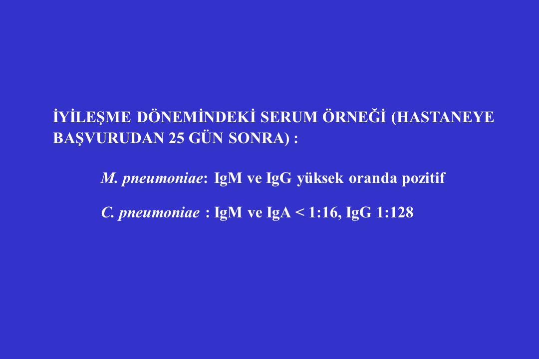 İYİLEŞME DÖNEMİNDEKİ SERUM ÖRNEĞİ (HASTANEYE BAŞVURUDAN 25 GÜN SONRA) : M. pneumoniae: IgM ve IgG yüksek oranda pozitif C. pneumoniae : IgM ve IgA < 1